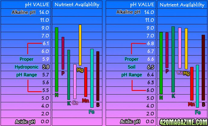coreys_ph_chart.jpg