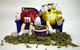 Cannabis_King